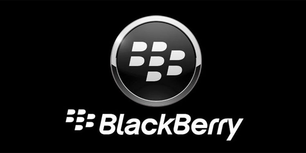 Blackberry 101 Training Session – Vancouver
